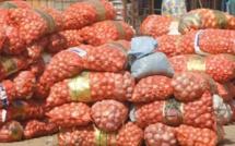 Saint-Louis : saisie de 50 tonnes d'oignon frauduleusement importées