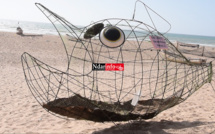 Lutte contre les déchets plastiques : 4 GOBIES placés sur la plage l'hydrobase (vidéo)