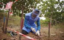 Casamance : Des démineurs enlevés puis relâchés par des hommes armés