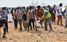 Journée africaine des mers et des océans : 6 tonnes de déchets plastiques recueillies, les acteurs sensibilisés sur la protection des espèces protégées marines