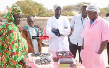 """Autonomisation des femmes : Inside forme les groupements de Moumbaye sur la conservation des """"pagnes"""" (vidéo)"""