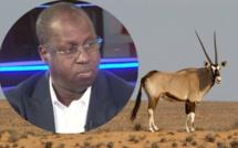 Affaire des 6 gazelles oryx : Le Pds porte plainte contre Abdou Karim Sall
