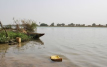 Fleuve Sénégal : l'eau continue de monter à Podor