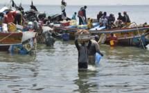 Saint-Louis : un expert analyse les impacts des changements climatiques sur la pêche (vidéo)