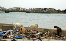 Saint-Louis: le fleuve, une poubelle.